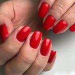 Czerwone hybrydowe- Julia Bila , CH Janki