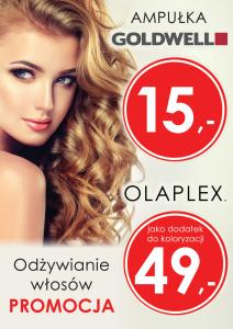 goldwell olaplex b1